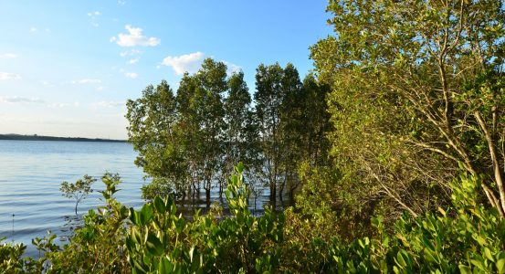 Hot Water Lakelands